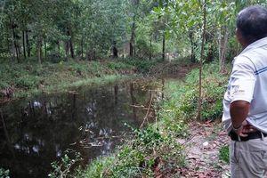 Vụ đất rừng 'biến' thành đất của cán bộ tại Thừa Thiên Huế: Ủy ban Kiểm tra Tỉnh ủy vào cuộc