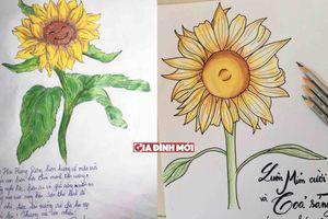 Công ty Eco nói gì về sự lan tỏa ảnh chụp hoa hướng dương trên mạng xã hội?