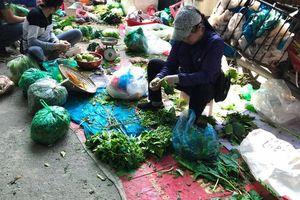Dễ rước họa vì ăn rau sống không rõ nguồn gốc