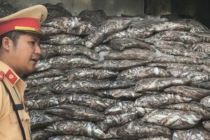 Phát hiện tài xế chở 3,5 tấn cá thối trên phố