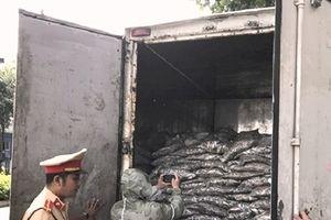 Đà Nẵng: Bắt giữ 3,5 tấn cá đã phân hủy bốc mùi hôi thối nồng nặc