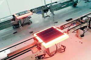 Tham vọng dẫn đầu năng lượng tái tạo