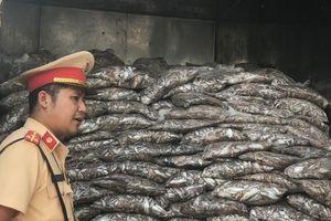 Bắt xe tải chở 3,5 tấn cá bốc mùi hôi thối