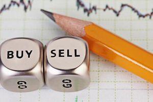 Miệt mài gom cổ phiếu, giá trị khoản đầu tư vào VEAM của Dragon Capital xấp xỉ 1.000 tỷ đồng