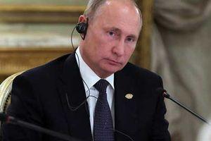 Ông Putin: Nga sẽ công bố bằng chứng Ukraine 'khiêu khích' ở eo biển Kerch