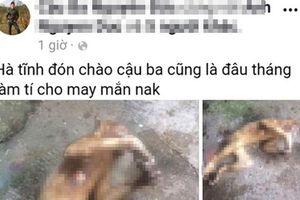 Lại thêm một thanh niên Hà Tĩnh 'khoe' ảnh giết khỉ lên mạng xã hội
