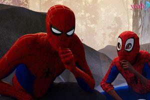 Người Nhện: Vũ trụ mới: Được đánh giá là tác phẩm xuất sắc nhất trong loạt phim về người Nhện