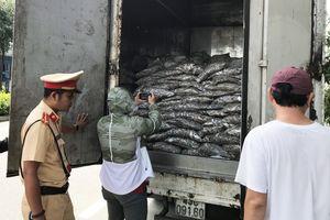 Bắt giữ xe tải chở 3,5 tấn cá thải nước bốc mùi hôi thối trên đường Đà Nẵng