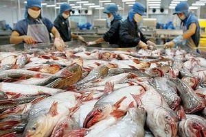 Quảng bá gạo và cá tra Việt Nam tại Philippines