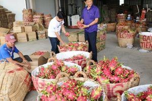Thương mại song phương Việt Nam - Hàn Quốc nhắm mốc 100 tỷ USD