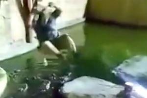 Người đàn ông bị tuột dây rơi xuống hồ cá sấu