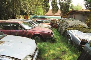 Chân dung những 'kẻ điên' giải cứu xe hơi từ bãi phế liệu