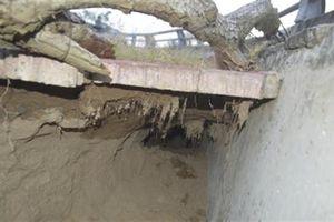 Bờ kè 80 tỷ/km xuất hiện hố sâu có thể 'nuốt' người