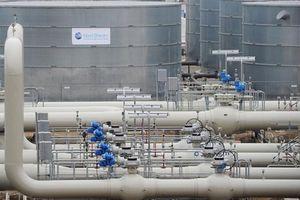 Đức có thể giảm lượng khí chảy qua Nord Stream-2 vì Ukraine