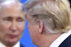 Nga nói gì về tin đồn Putin và Trump có quan hệ 'mờ ám'?