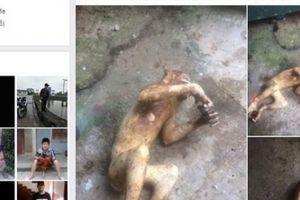 Triệu tập đối tượng đăng tải hình ảnh giết hại cá thể khỉ phản cảm