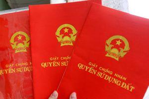 Kỷ luật bí thư huyện cấp đất sai đối tượng cho vợ lãnh đạo