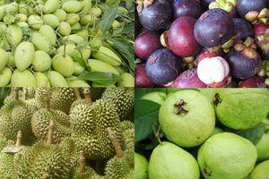 Nhật Bản muốn nhập khẩu trái cây Việt Nam