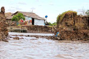 Cà Mau mất 8.870 hecta đất do sạt lở trong hơn 10 năm