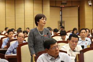 Hà Nội: Thông qua chính sách khuyến khích phát triển sản xuất nông nghiệp