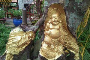 Nghệ nhân Cần Thơ 'chơi ngông', dát vàng lá lên thân cây