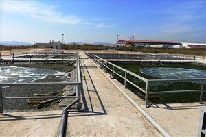 Thực hư việc Công ty Tân Tiến 'tố' BQL Khu kinh tế tỉnh Quảng Ninh gây khó khăn