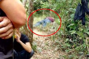 Phát hiện thi thể người đàn ông trong rừng Tam Đảo