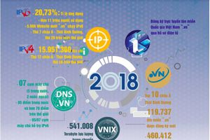 Tỉ lệ ứng dụng IPv6 Việt Nam thứ 7 khu vực châu Á - Thái Bình Dương