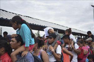 Bulgaria sẽ không tham gia Hiệp ước toàn cầu về di cư của Liên hợp quốc