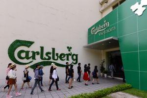 Carlsberg Việt Nam: Nỗ lực theo đuổi sự hoàn hảo