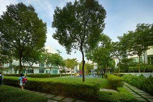 ParkCity Hanoi: 'Món quà' ý nghĩa dành cho đấng sinh thành