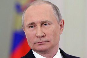 Ông Putin nêu lý do không hồi đáp những cố gắng liên lạc của ông Poroshenko
