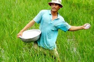Không phải đất nào cũng trồng được các sản phẩm nông nghiệp hữu cơ