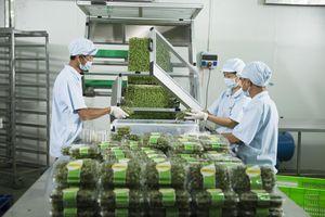 Nông sản Việt Nam trước ngưỡng cửa lớn của thị trường EU