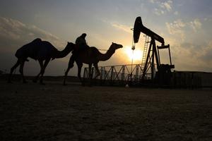 Cánh bướm Qatar 'gây bão' ở OPEC