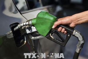 Giá xăng E5 RON 92 giảm sâu 1.446 đồng/lít