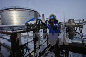 Giá dầu thế giới giảm trước thềm cuộc họp của OPEC