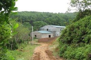 Vụ cấp 'sổ đỏ' trên đất rừng: Cần làm rõ trách nhiệm của Bí thư Huyện ủy Ba Vì