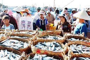 Vụ cá Bắc 2018-2019: Mục tiêu đạt sản lượng 1.589 tấn