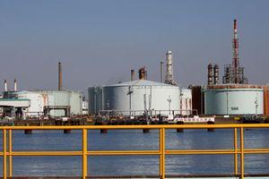 Giá dầu trượt dốc gần 1% do lo ngại OPEC có thể hoãn cắt giảm sản lượng