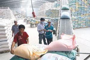 Việt Nam thâm nhập sâu hơn thị trường Trung Quốc thế nào?