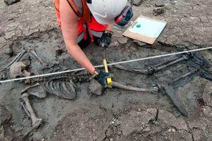 Tìm thấy bộ xương 500 năm tuổi