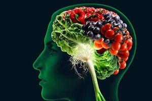 Những chất dinh dưỡng tốt cho não