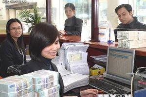Tháng 11: Thị trường tiền tệ ổn định khi thông tin toàn cầu tích cực