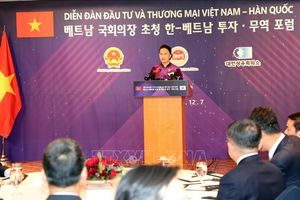 Quan hệ Việt Nam - Hàn Quốc đang có bước phát triển nhảy vọt hiếm thấy