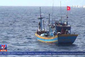 Cứu tàu cá cùng 8 ngư dân gặp nạn