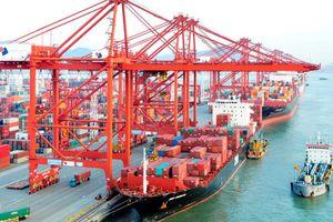 Bộ Tài chính đề xuất bãi bỏ một số thông tư trong lĩnh vực thuế xuất nhập khẩu