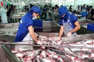 Xuất khẩu nông sản, thực phẩm vào EU: Khó mà dễ!
