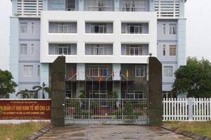 Đại gia chi 2,6 tỷ đồng rước chó 'cơ bắp' siêu 'khủng' về Việt Nam
