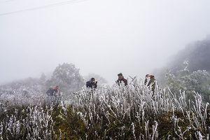 Cảnh báo rét đậm ở miền Bắc từ ngày 9-12